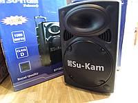 Активна акустика з акумом UKC BT12 (два мікрофони в комлекті), фото 1