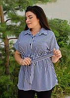 Нета. Стильная блуза для больших размеров. Полоса сине-белая., фото 1