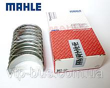 Вкладыши коленчатого вала, коренные (+0.25) на Renault Trafic 1.9dCi 2001-2006 MAHLE (Германия) 021HS20012025