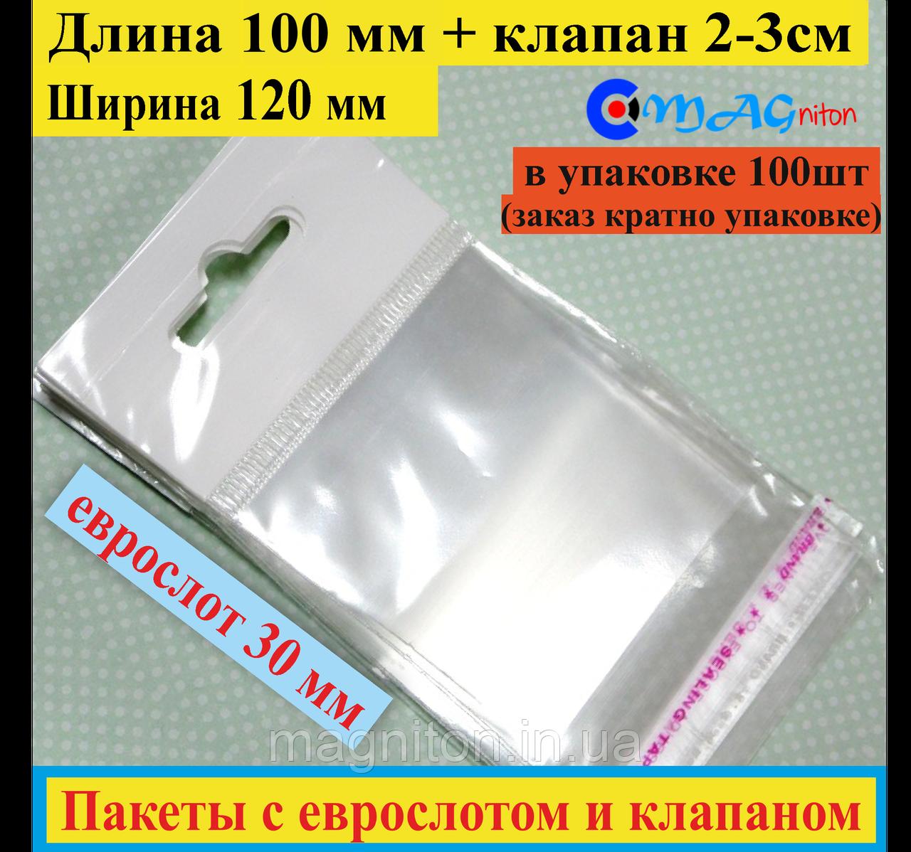 Пакет с еврослотом + клапан с липкой лентой 100*120мм