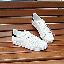 Кросівки в стилі Adidas stan smith еко шкіряні перфорація літні superstar з чорним задником, фото 2
