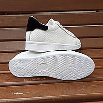 Кросівки в стилі Adidas stan smith еко шкіряні перфорація літні superstar з чорним задником, фото 3