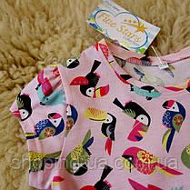 Детская футболка розовая с попугаями Five Stars KD0317-110p, фото 3