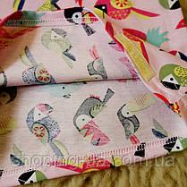 Детская футболка розовая с попугаями Five Stars KD0317-134p, фото 3