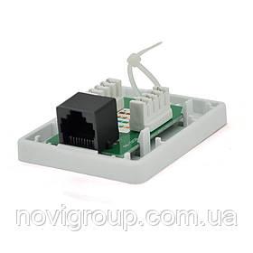 Розетка RITAR UTP 8P8C RJ45 1 порт. накладна біла Q500