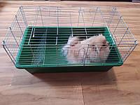 """Клетка вольер для животных """"  Гранд"""" (910 х 520 х 450)мм цинк  разные цвета, фото 1"""