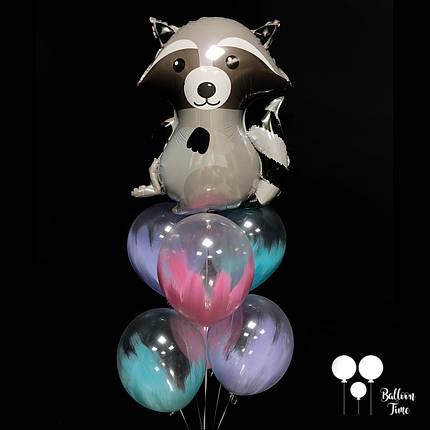 Енот + шары с краской, фото 2