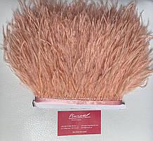 Перьевая тесьма из перьев страуса. Цена за 0,5м