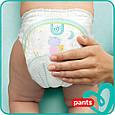 Підгузки-трусики Pampers Pants 7 (17кг+), 80шт, фото 3