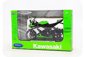 Мотоцикл модель «09 Kawasaki Ninja ZX-10R» K19660PW