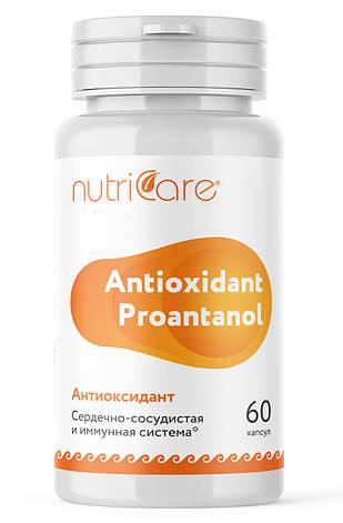 Антиоксидант - защита от свободных радикалов, фото 2