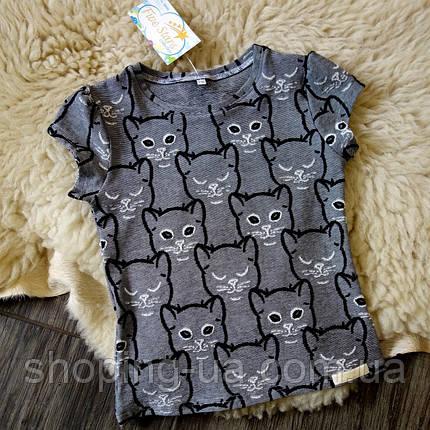 Детская футболка серая с котиками Five Stars KD0318-110p, фото 2