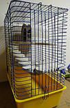 Клетка для шиншилл с деревяным домиком, 50*35*61 см, фото 2