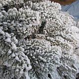 Лита ялинка Арктика засніжена 2,1 м. Різноманітні ялинки, фото 2