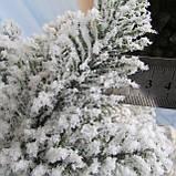 Лита ялинка Арктика засніжена 2,1 м. Різноманітні ялинки, фото 5