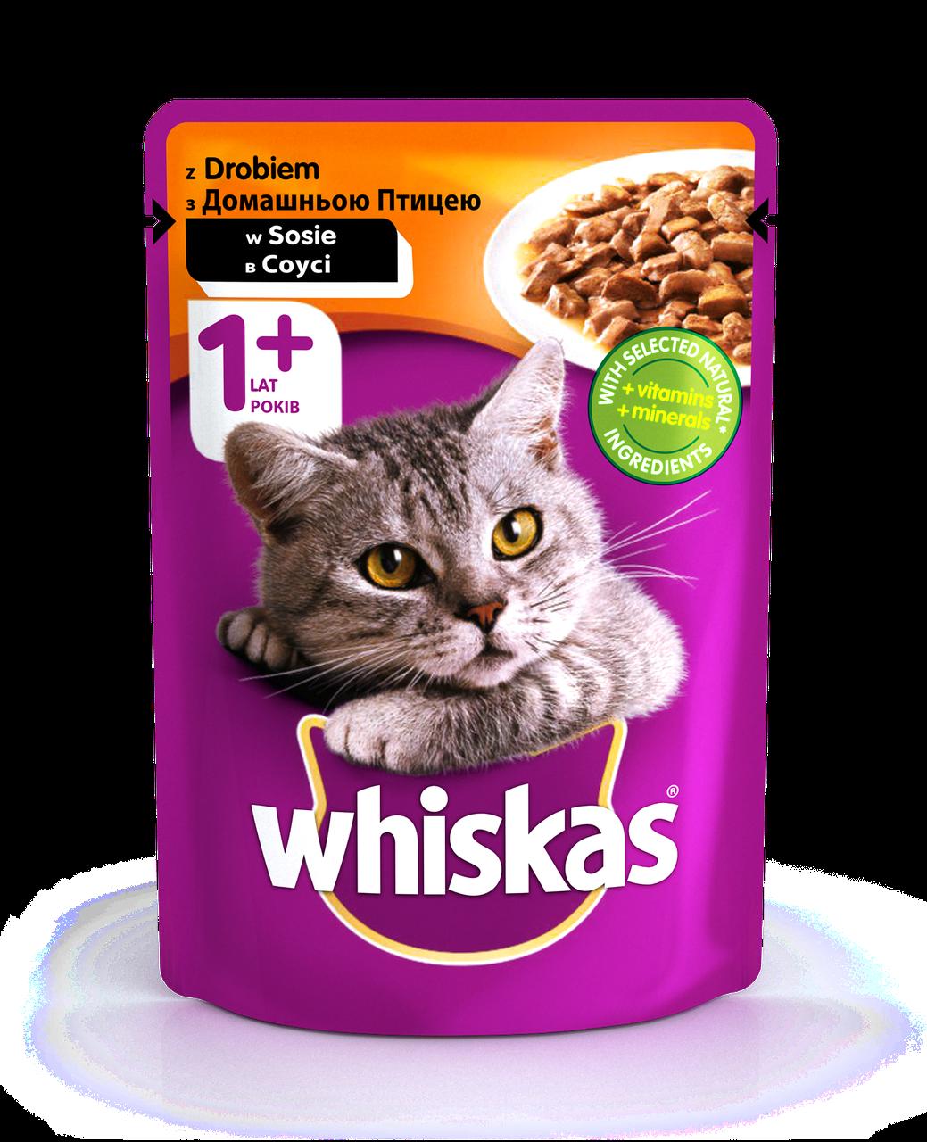 Вологий консервований корм з Домашньою птицею в соусі для дорослих кішок 100 г Whiskas Віскас