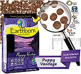 Сухой корм для щенков Earthborn Holistic Puppy Vantage 2,5 кг, фото 2