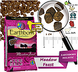 Сухой корм для собак Earthborn Holistic Meadow Feast with Lamb Meal с ягненком 2,5 кг, фото 2