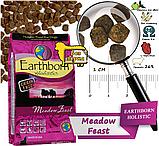 Сухой корм для собак Earthborn Holistic Meadow Feast with Lamb Meal с ягненком 12 кг, фото 2