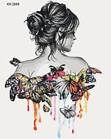 Картины по номерам - Нежность бабочки (КНО2688)