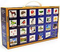 Розвиваюча гра Картки Домана Велика валіза «Вундеркінд з пелюшок» - 21 набір + книга арт. 195319, фото 5
