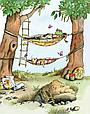 Тафити и летающая корзина, фото 7