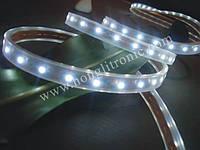 Белая (white) лента светодиодная  6,0W SMD3528 (60 LED/м); Outdoor IP67 Premium