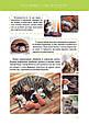 Велика книга про тварин, фото 3
