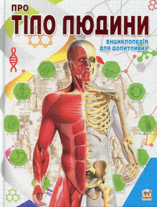 Про тіло людини