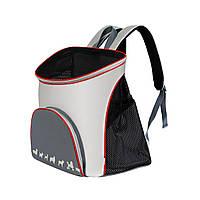 Рюкзак-переноска COLLAR 35х25х37 см для кішок і собак до 8 кг