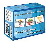 Развивающая игра Карточки Домана Французско-русский чемоданчик «Вундеркинд с пеленок» - 10 наборов арт. 225512, фото 1