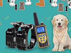 Обучающий электро ошейник для тренировки собак с д/у 2 ресивера
