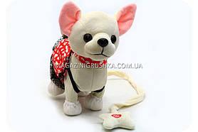 Интерактивная мягкая игрушка «Музыкальная собачка Лучший друг с поводком» №2 C23026