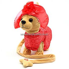 Интерактивная мягкая игрушка «Музыкальная собачка Лучший друг с поводком» №3 C23026