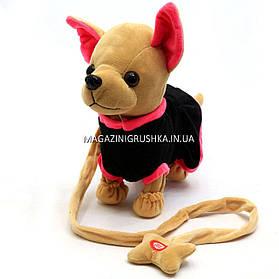 Интерактивная мягкая игрушка «Музыкальная собачка Лучший друг с поводком» №4 C23026