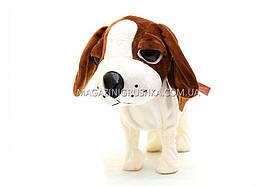 Интерактивная мягкая игрушка «Музыкальная собачка Лучший друг» №1 С22892