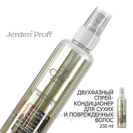 Двухфазный спрей-кондиционер для сухих и поврежденных волос JERDEN PROFF, 250 ml, фото 2