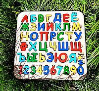 Азбука - сортер цветная, украинский язык размер 36,5*36,5см