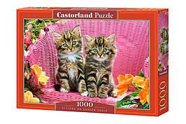 Пазлы 1000 элементов Castorland 103775 Котята