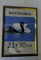 Фоторамка ,пластиковая, А4, 21х30, рамка , для фото, дипломов, сертификатов, грамот, картин, 1415-95