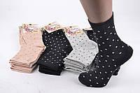 Жіночі Бавовняні шкарпетки, фото 1