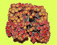 Добавок  ягодка снежная, фото 1