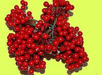 Добавок  ягодка лаковая маленькая, фото 1