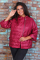 М524 Курточка больших размеров батал бордо / марсала