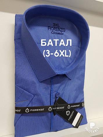 Рубашка  батальная короткий рукав Fiorenzo в клетку, фото 2