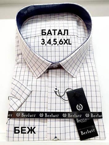 Сорочка батальна короткий рукав Berluti classik в клітку, фото 2