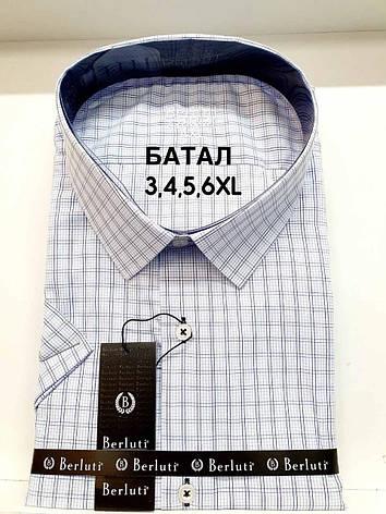 Рубашка  батальная короткий рукав Berluti classik в клетку, фото 2
