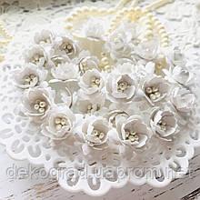 Цветы Сливы 25мм Белый с тычинками