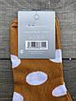 Женские носки короткие хлопок Montebello цветные в горох горошек 35-40 12 шт в уп микс 6 цветов, фото 2