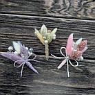 Бутоньерка из лагуруса в разных цветах, фото 2
